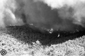 Incendi 1983 (12)