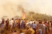 Incendi 1983 (3)