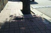 Arranjament de les voreres i del paisatge urbà de la urbanització La Madriguera