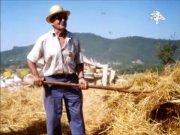 Audiovisual Pere cantal