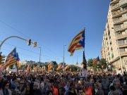 Manifestació Llibertat (7)