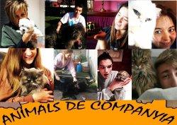 'Animals de companyia' entre bambolines i lliurament de premis del concurs d'Art Jove de Taradell