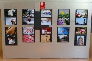 Expo Curs d'Iniciació a la Fotografia