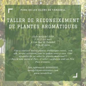 Taller reconeixement plantes aromàtiques