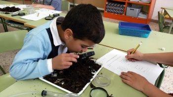 Compostatge escolar - Escola Les Pinediques - Servei educació ambiental
