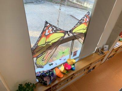 Concurs de balcons i finestres Carnaval 213