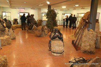 Exposició al Centre Cultural Costa i Font