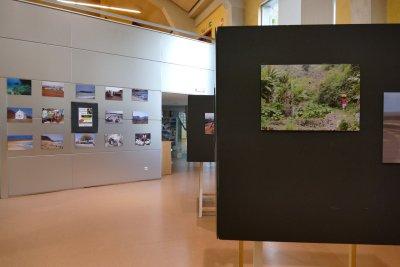Exposició de fotografies