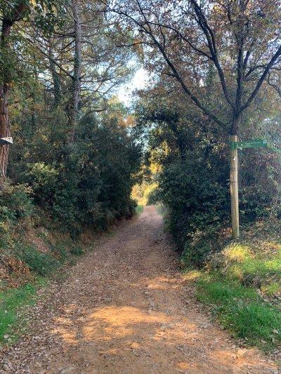 Camí de Can Talaia fins al pont del Molí del Sors