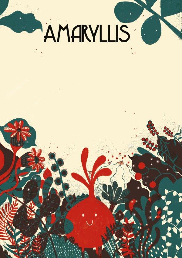 Presentació del llibre 'Amaryllis' il·lustrat per Anna Aparicio