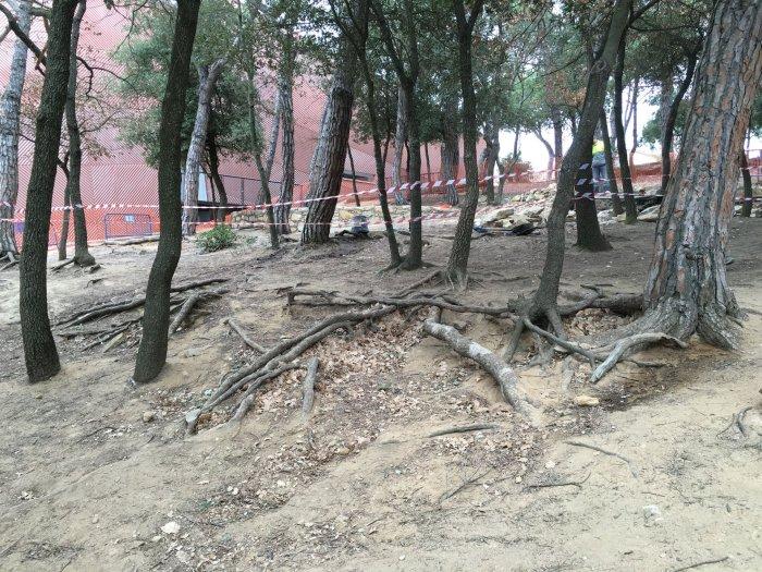 Sediment de terres de les Pinediques 2